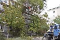 Спиливание Опасных Аварийных Проблемных Деревьев, в Курске