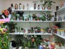 магазин цветов, в г.Белово