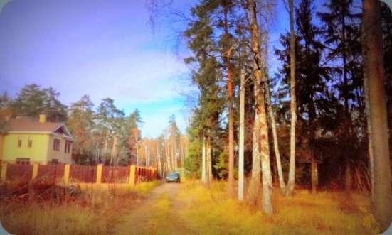 Большие, хвойные деревья. 14 соток. Газ центральный. 1 км от города Звенигород.