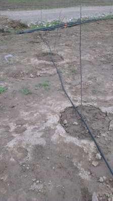 Капельное и дождевое орошение и фильтры