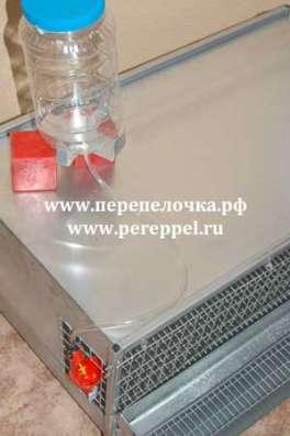 Клетка для содержания перепелов в Екатеринбурге Фото 1