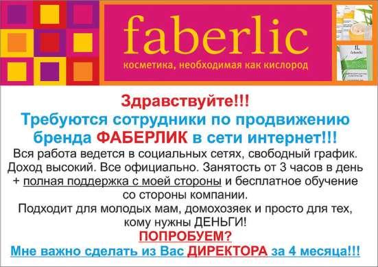 Партнёр российской компании Faberlic