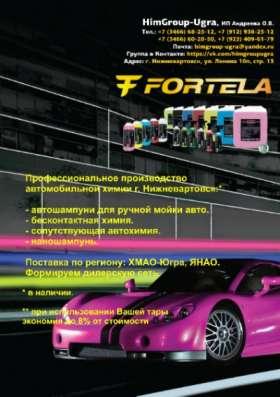 Химчистка салона - Fortela Tango