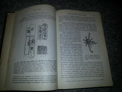 "Книга ""Клътка и ткани"" 1904г в Санкт-Петербурге Фото 1"