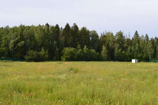 Участок в Новой Москве, Киевка, лес