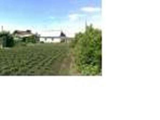 Продам дом с земельным участком 9 соток, курорт Боровое