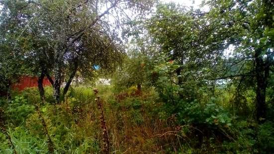 Продам участок с дачей в 8 км от г Выборга Фото 2