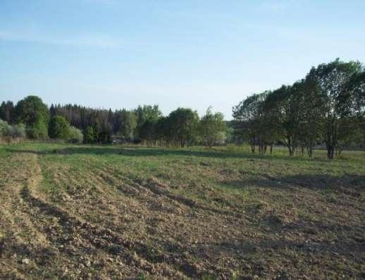 Продается земельный участок 10 соток под ЛПХ в д. Межутино, Можайский р-он, 143 км от МКАД по Минскому шоссе Фото 4