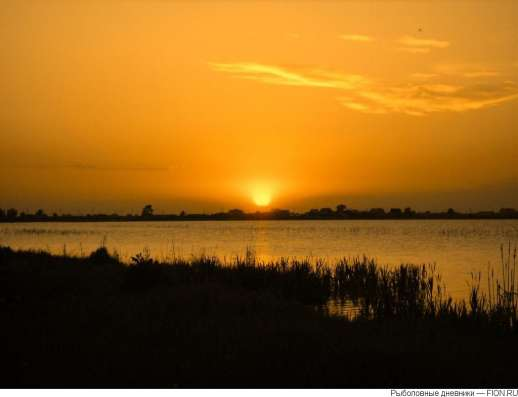 Участок у озера Червяное