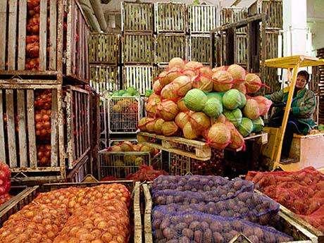 Холодильные камеры для овощей и фруктов.Монтаж,установка. в г. Симферополь Фото 1