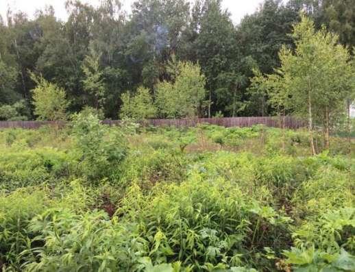 Продается земельный участок 8 соток в СНТ Яблонька (деревня Красновидово), Можайский район 115 км от МКАД по Минскому, Можайскому шоссе.