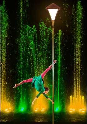 Билеты в цирк