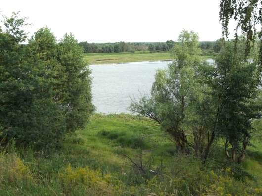 Продаю дом на берегу Припяти в г. Петриков