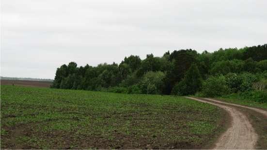 Земельные участки ИЖС мкр. Красивый пруд от собственника в Томске Фото 1