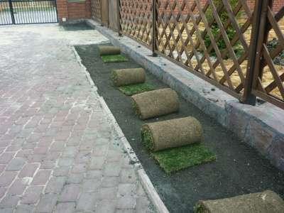 """Рулонный газон """"Элитный""""."""