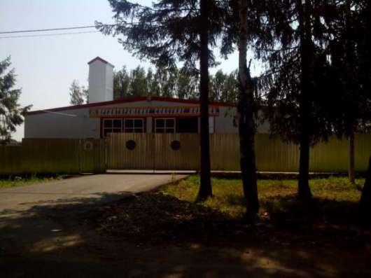 Продаю 30 соток с выходом в лес, д. Горетово. в г. Можайск Фото 1