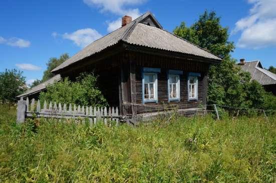 Бревенчатый дом в тихой деревне, рядом с рекой и лесом
