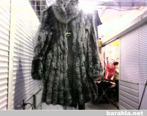 Пальто песец